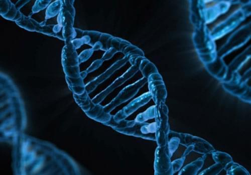Пар электронных сигарет не вызывает ДНК мутации, как дым от табака обычных сигарет